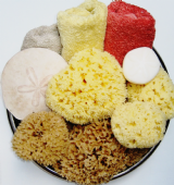 Natural Sea Bath Sponges